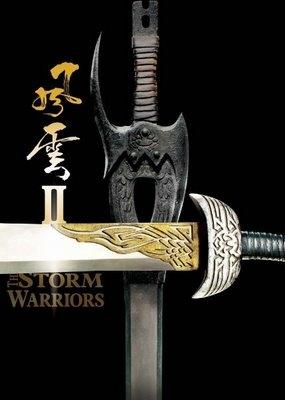 The Storm Warriors Picture
